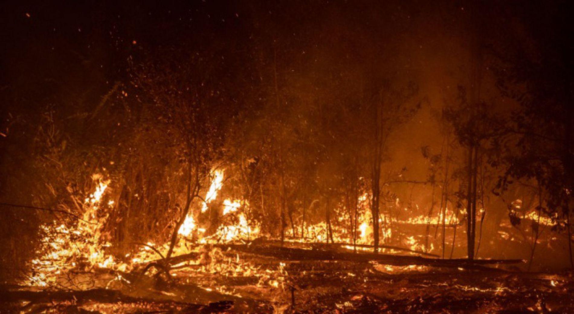 Более 400 пожаров были потушены вчера в стране