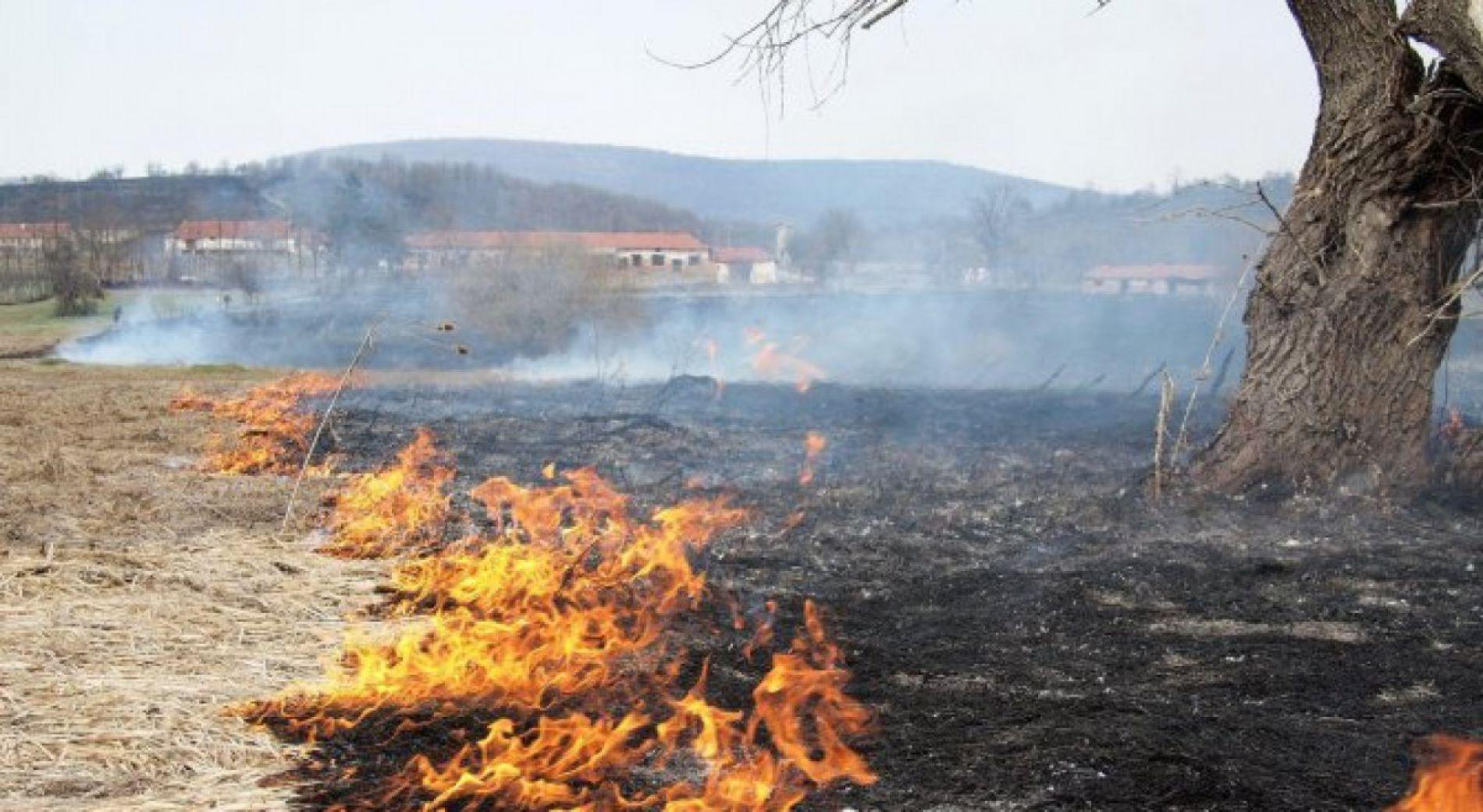 Пожарный риск в 10 районах страны сегодня