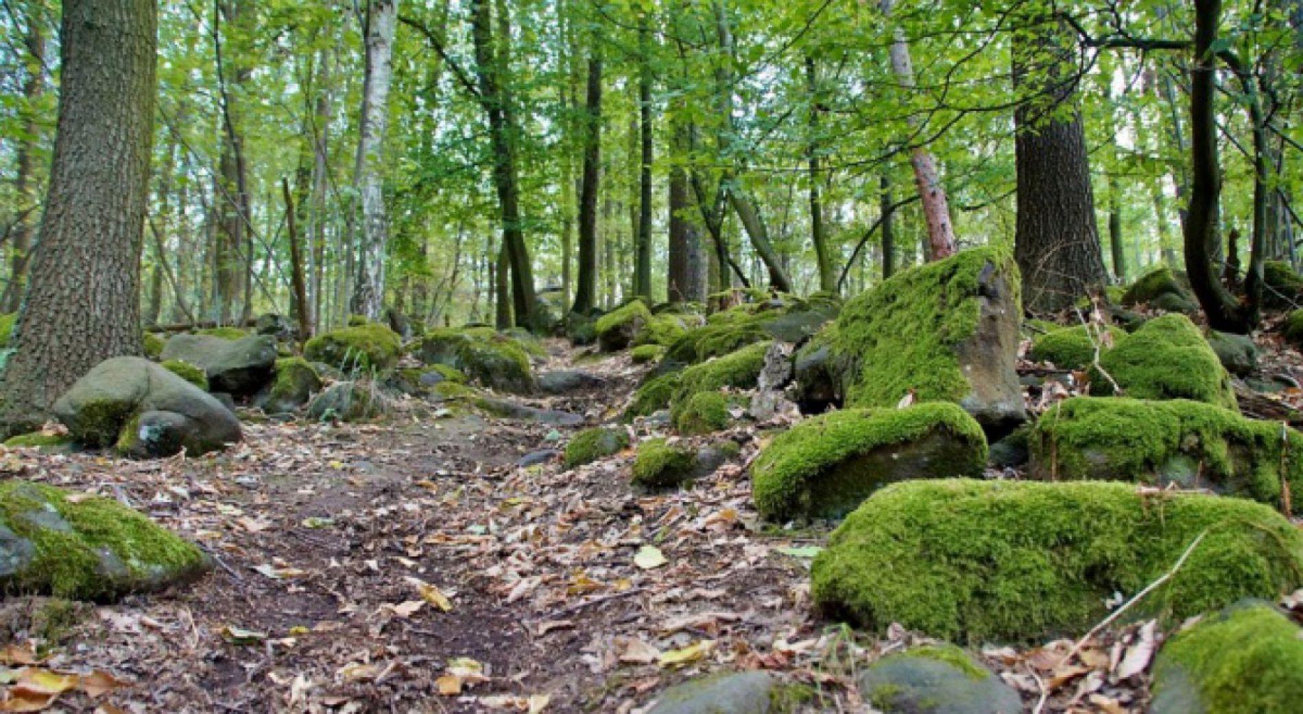 Новый туристический маршрут впервые связывает Подгорието с хижиной Беласица